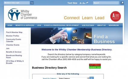 47. Business Directory Search