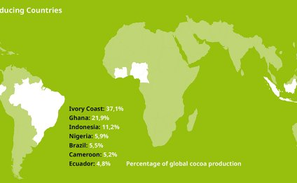 Worldwide, 90% of cocoa is
