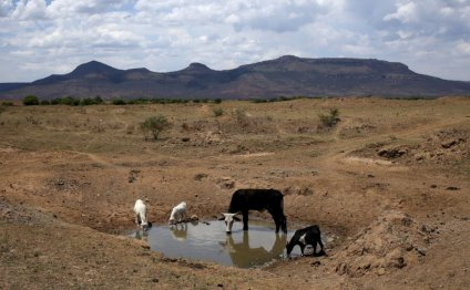 S. African Drought Threatens