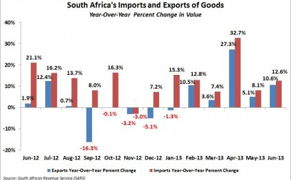 South Africa s imports and